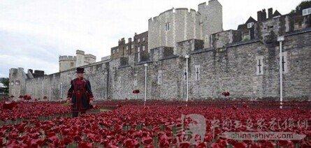 """纪念一战英国伦敦塔""""种植""""陶瓷的罂粟花"""